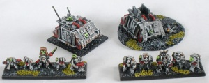 Sin Eater Command Squad and Rhino transport plus Sin Eater Terminator Squad with Terminator Chaplain