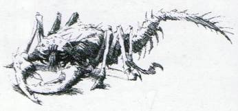 Catachan Devil as shown in 3rd edition Codex: Catachan