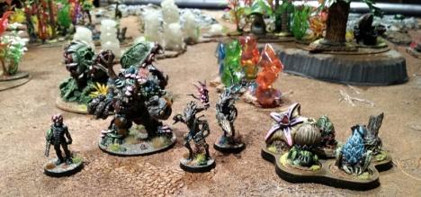 The Foaks get militant.