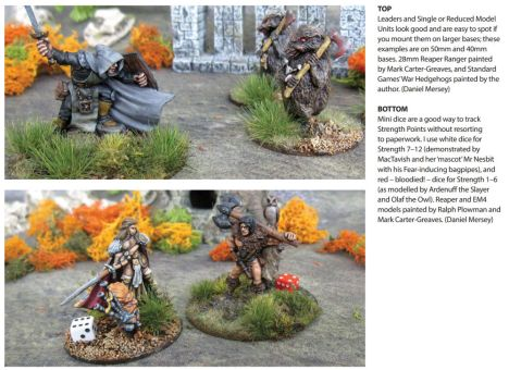 Dragon Rampant, p.9. Used without permission.