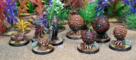 Unscrupulous hunters disturb a cirripod nest...
