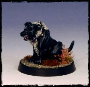 Marauder Dark Elf Warhound